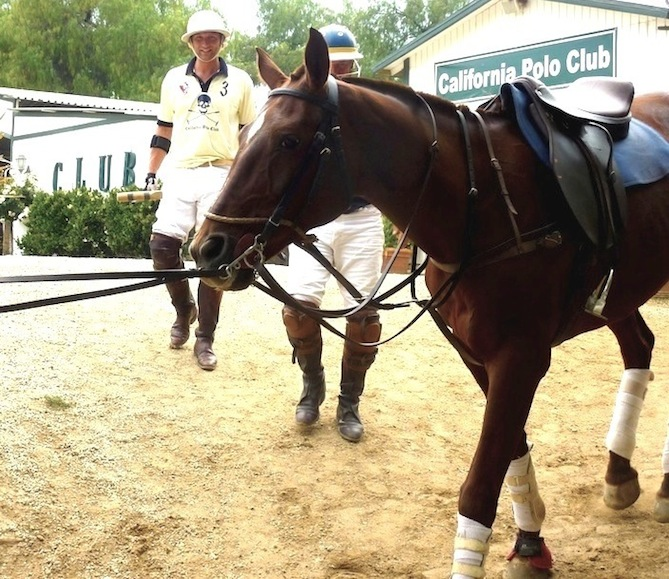 California Polo Club with Tamsin's Supper Club   The Daily Truffle LA