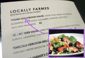 young-hollywood-salad-four-seasons